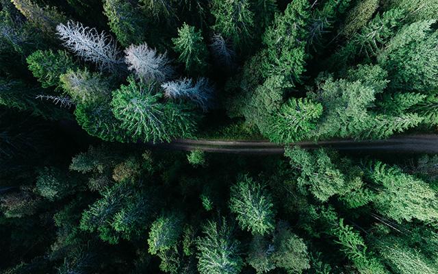 Lendys engagé face aux enjeux de la biodiversité
